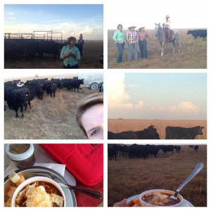 Debbie's Ranch