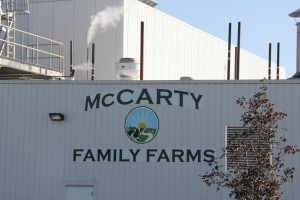 McCarty Family Farms