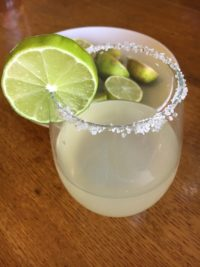 The Fat Burning Margarita